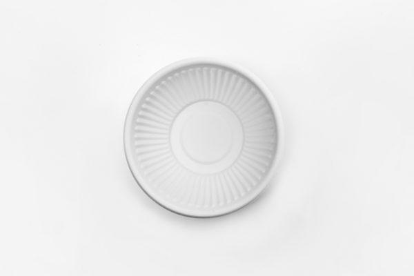 biodegradable dessert bowl